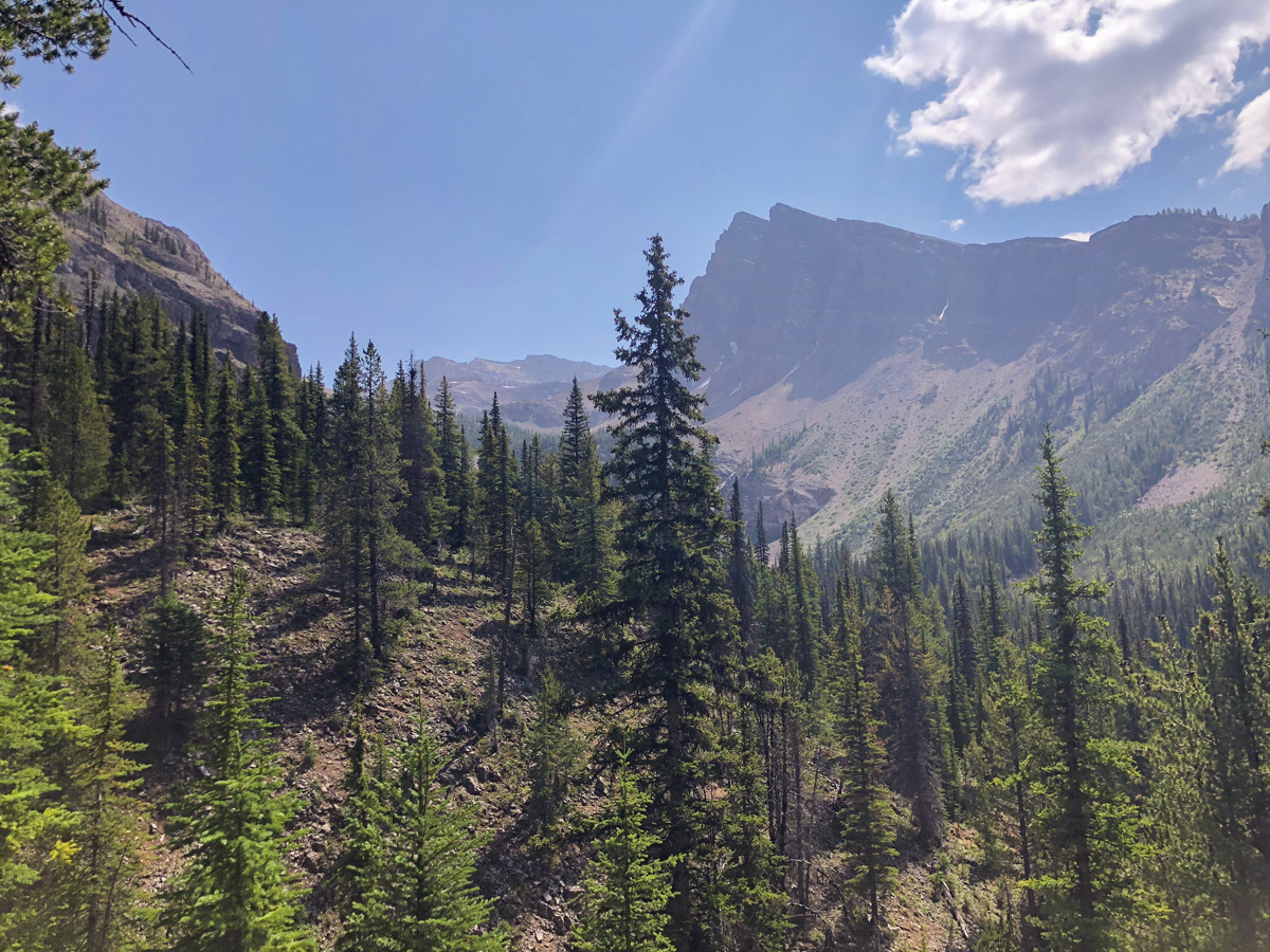 Ball Pass hike in Kootenay National Park is a beautiful trail with amazing the Canadian Rockies views