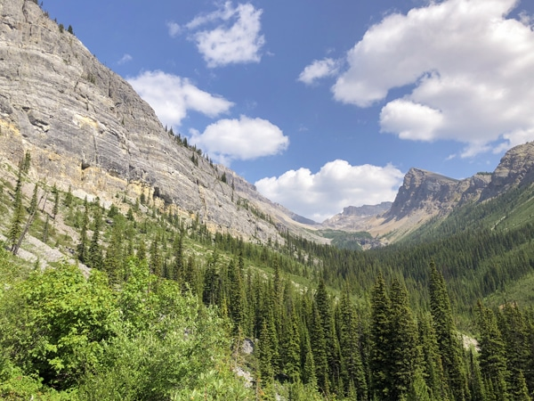 Scenery of Ball Pass hike in Kootenay National Park, the Canadian Rockies