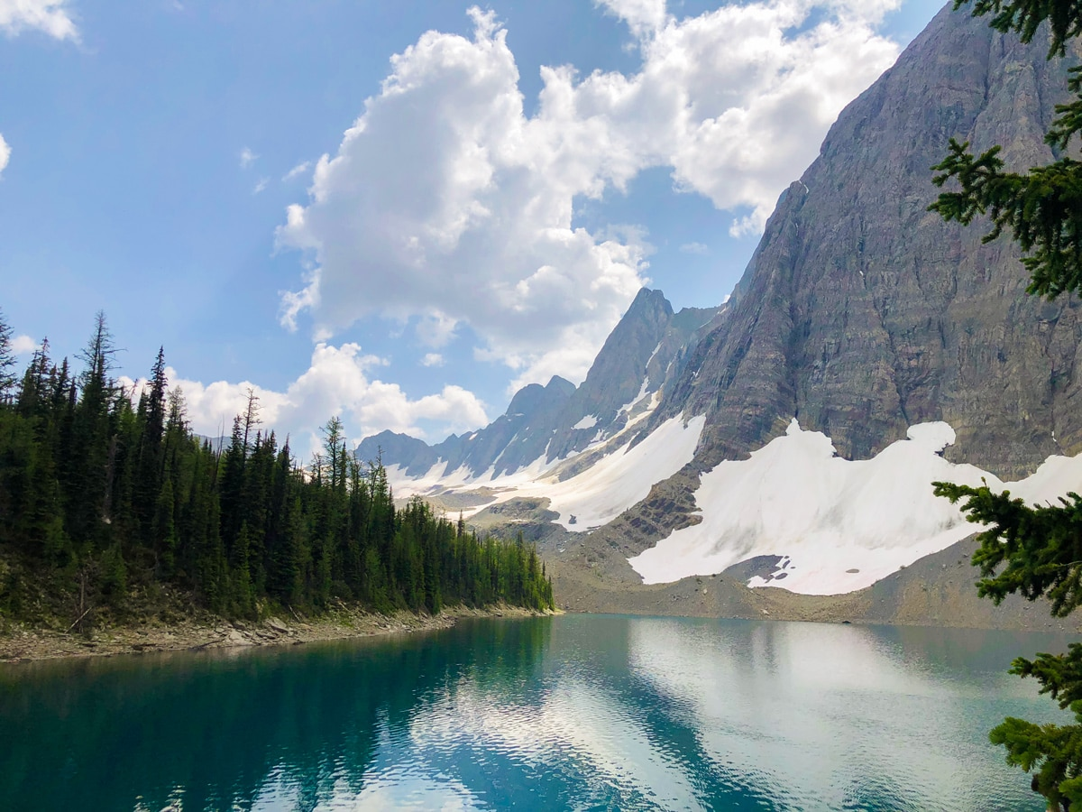 Beautiful trail of Floe Lake hike in Kootenay National Park