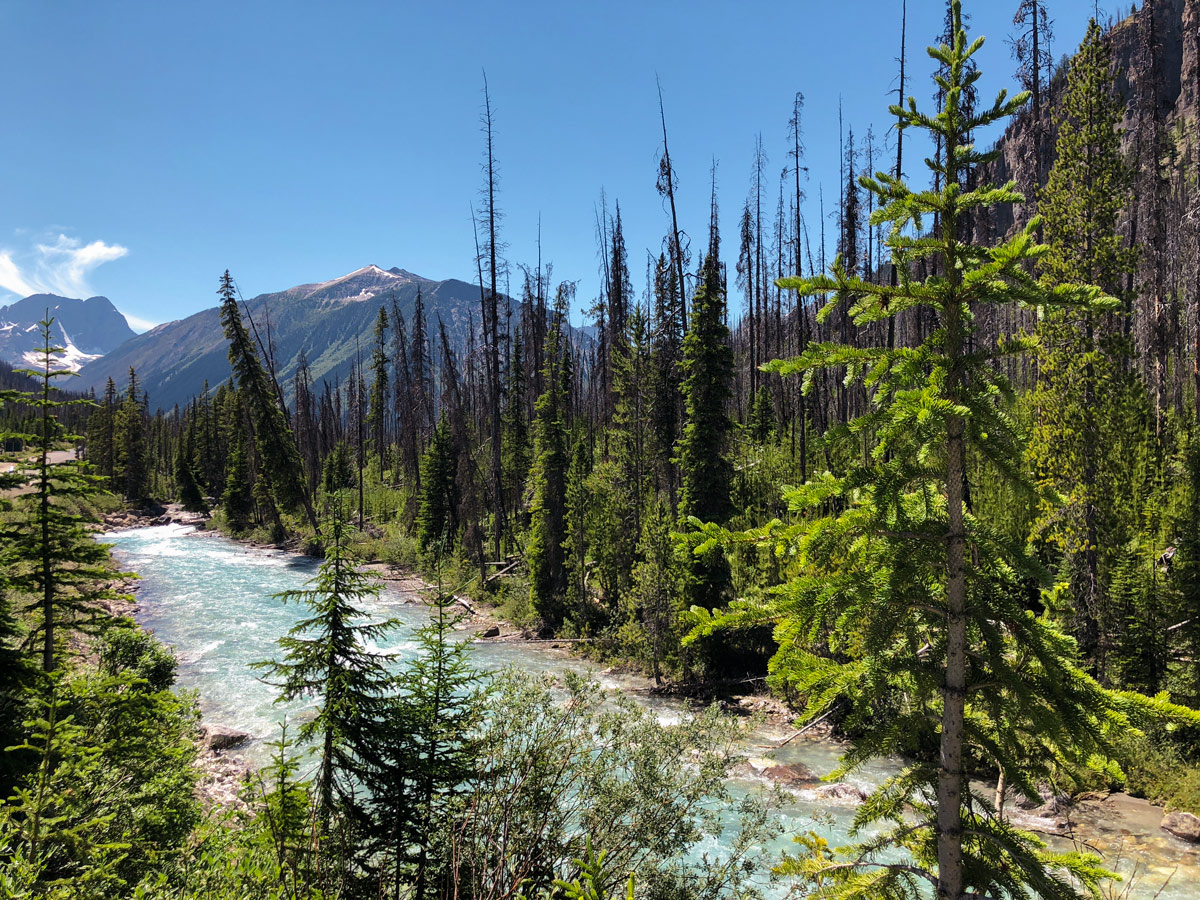 Crossing the river on Marble Canyon hike in Kootenay National Park