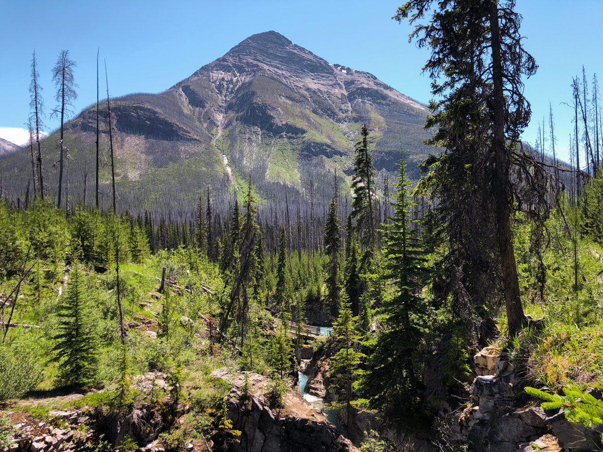 Marble Canyon hike in Kootenay National Park is a family-friendly route in British Columbia