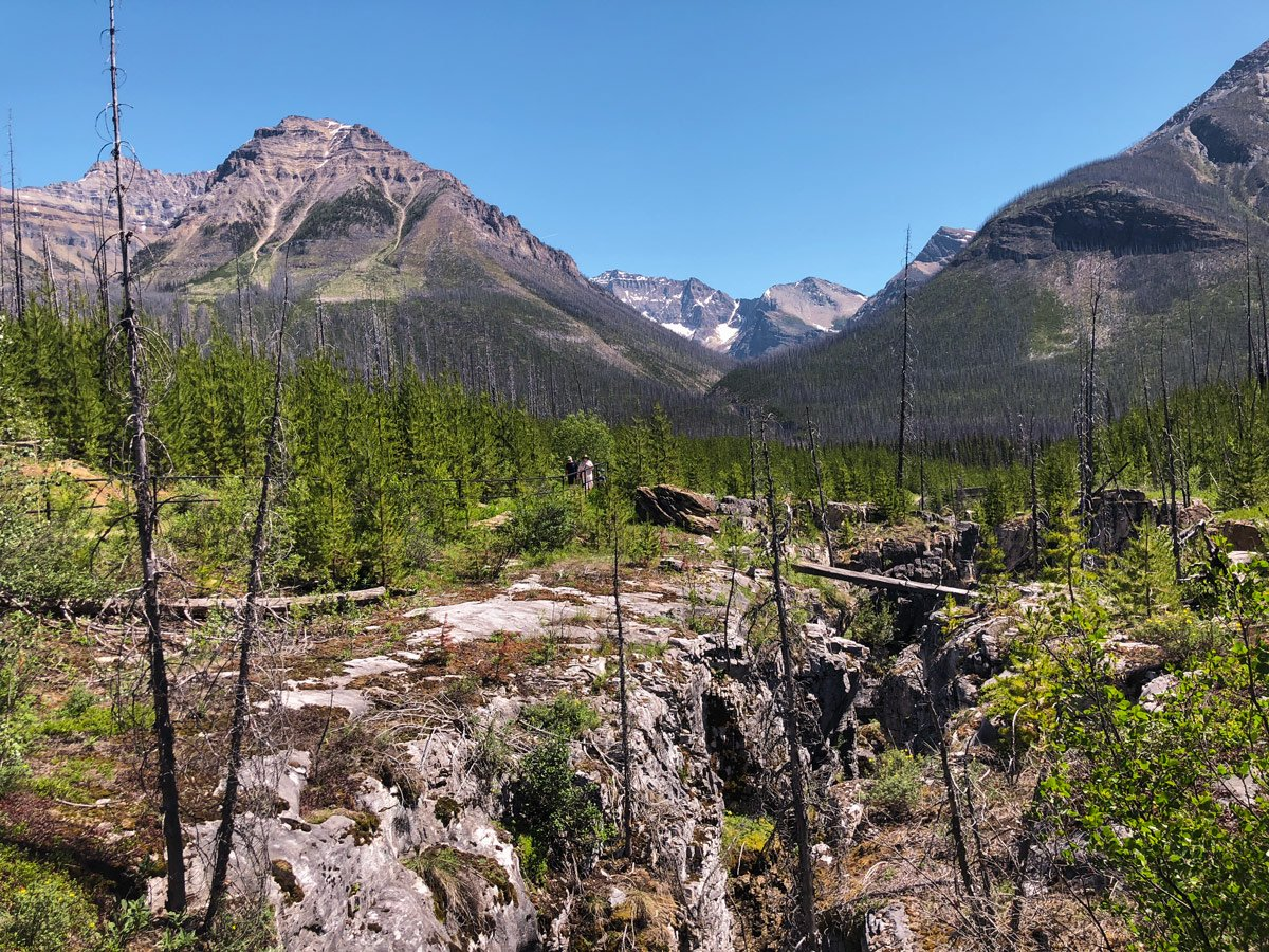 Family hiking on Marble Canyon hike in Kootenay National Park