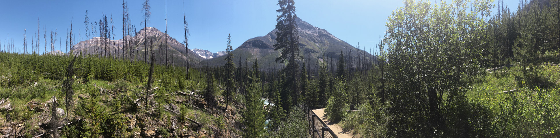 Panorama of Marble Canyon hike in Kootenay National Park