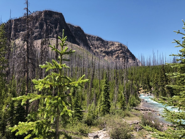 Great views on Marble Canyon hike in Kootenay National Park