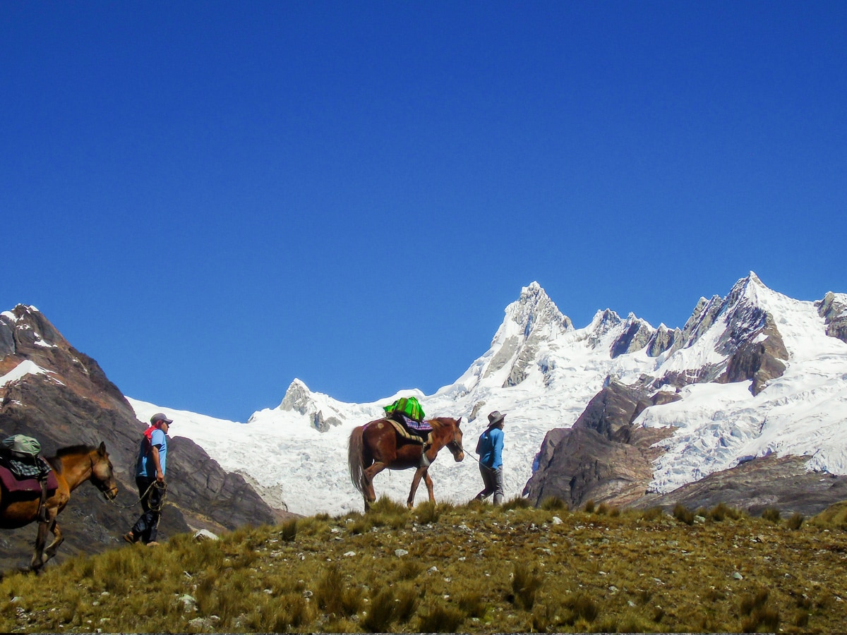 Horses carrying Loads trekking in Cordillera Blanca on guided tour