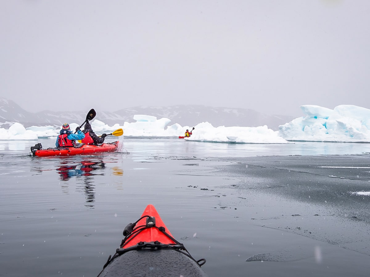 Id rather kayak amongst the icebergs in Greenland than have a daily coffee