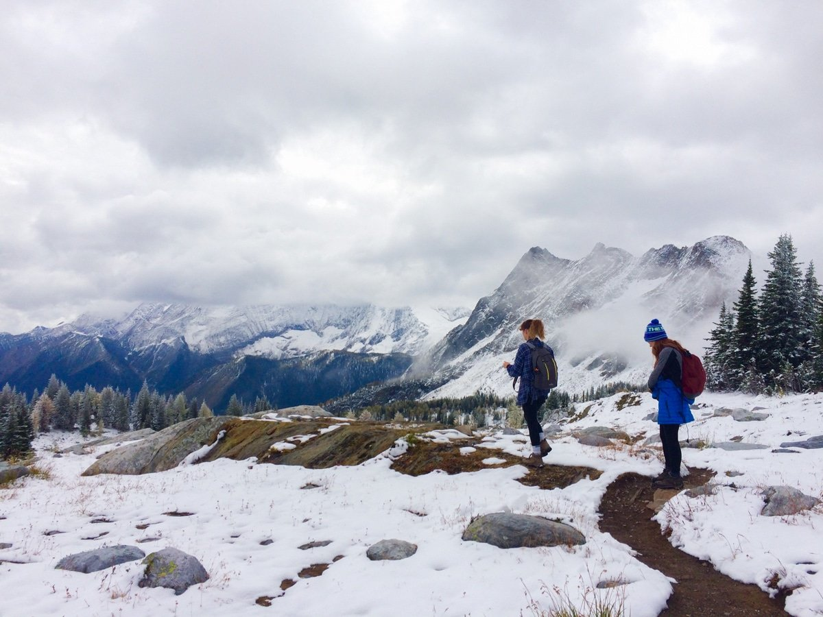 Tree line ends on Jumbo Pass and Horseshoe Glacier hike in West Kootenays
