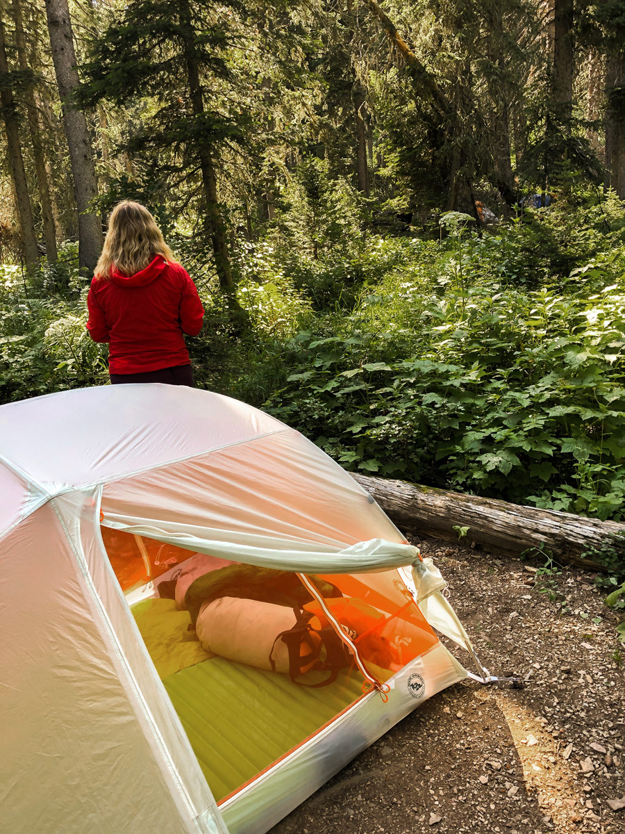 Big Agnes Copper Spur 2 Platinum Tent in dense forest on backpacking trip