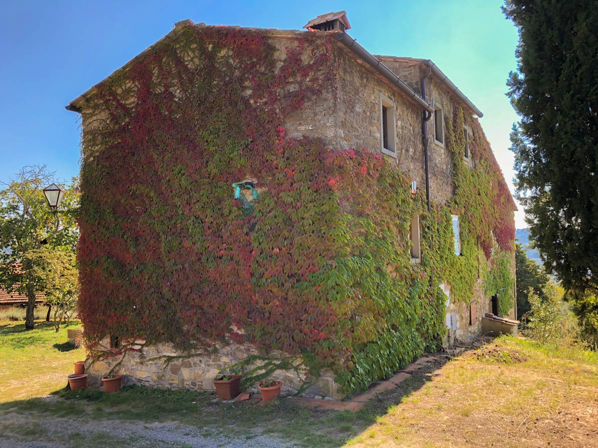 House covered by vines in Radda along the hiking trail