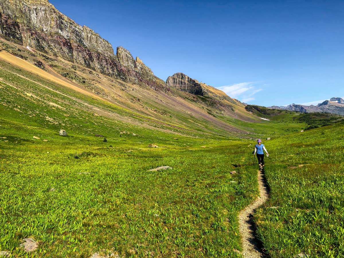 Trail to Fifty Mountain Campsite on North Circle Backpacking Trail in Glacier National Park