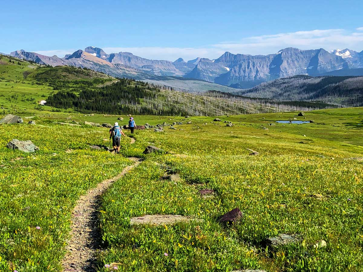The view of Fifty Mountain on North Circle Backpacking Trail in Glacier National Park