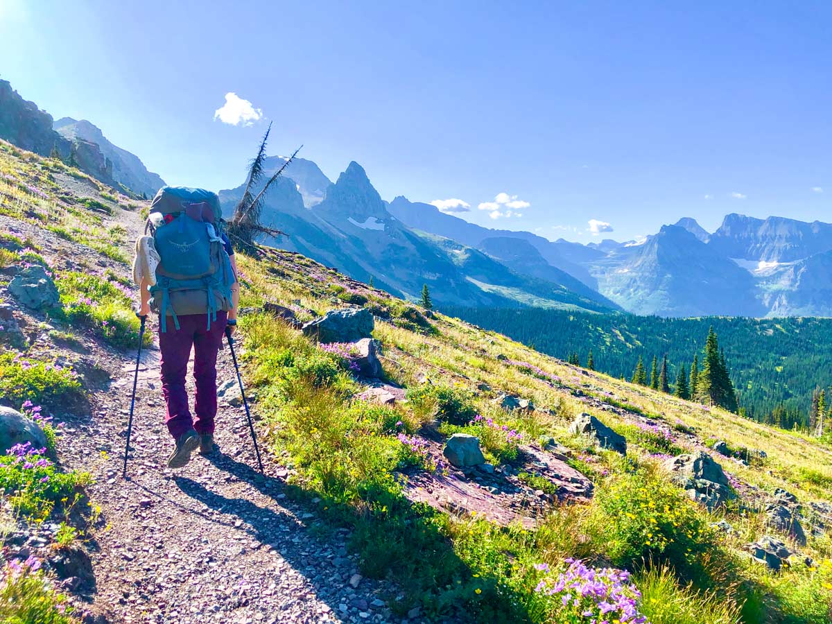 Hiker approaching the Swiftcurrent Pass on North Circle Backpacking Trail in Glacier National Park
