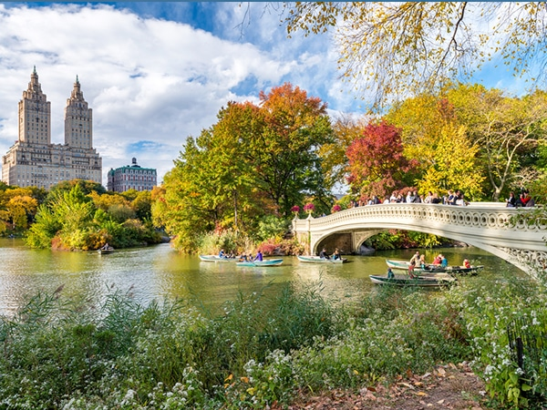 NYC Central Park on city-walk in New York City