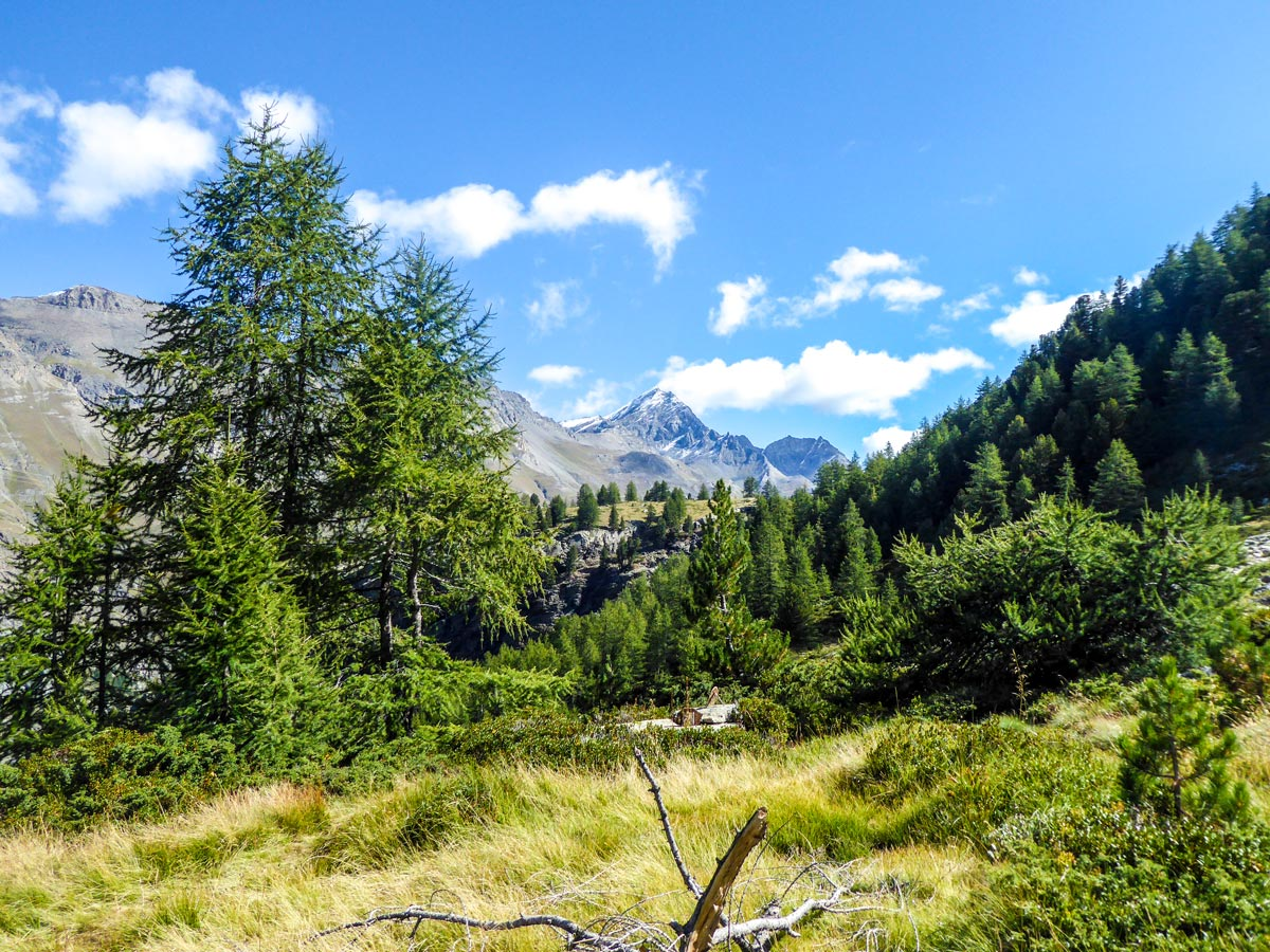 Beautiful trail towards the lake on Lago di Loie hike in Gran Paradiso National Park, Italy