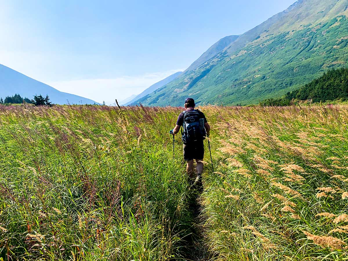 Hiking through wildflowers on a trail to Carter and Crescent Lakes