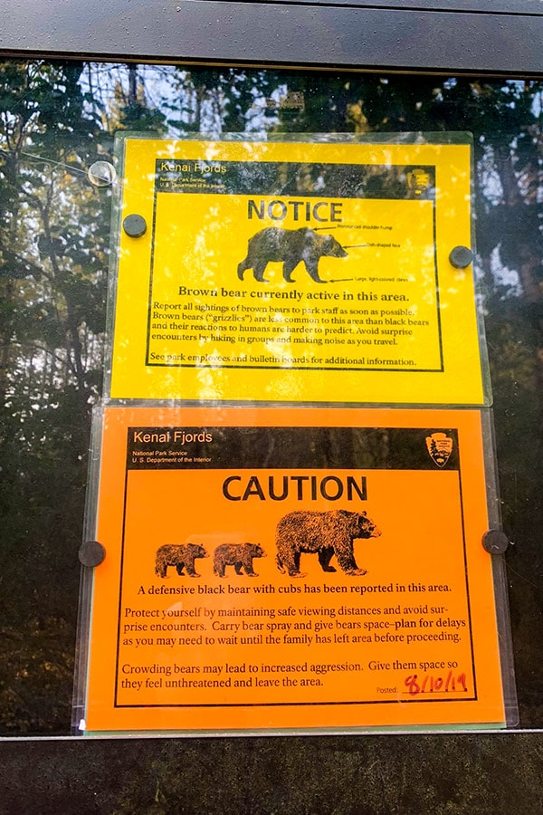 Signs about bear danger on Harding Icefield hike in Alaska