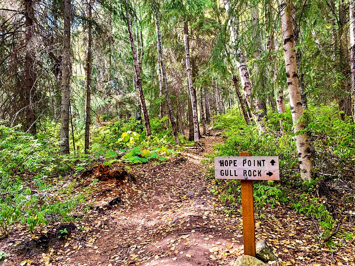 Trail signs on a dayhike of Hope Point Trail in Alaska
