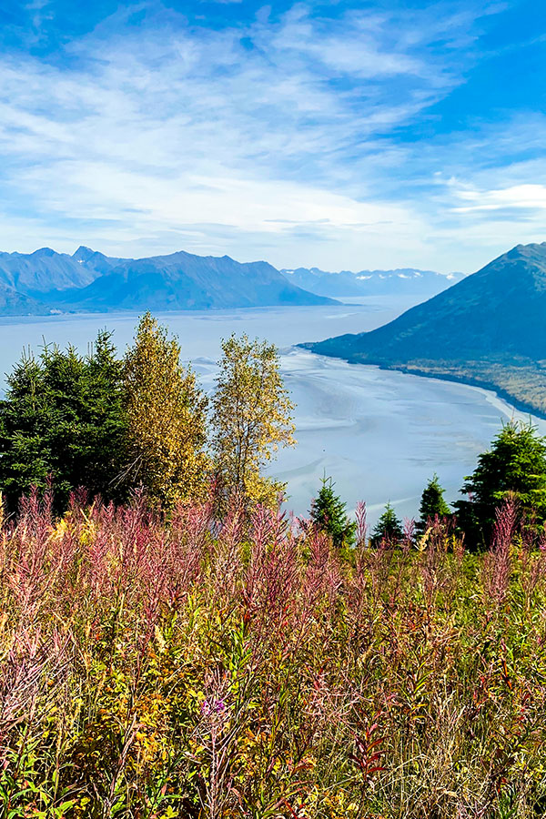 Expansive views from the trail of Hope Point near Turnagain Arm Anchorage