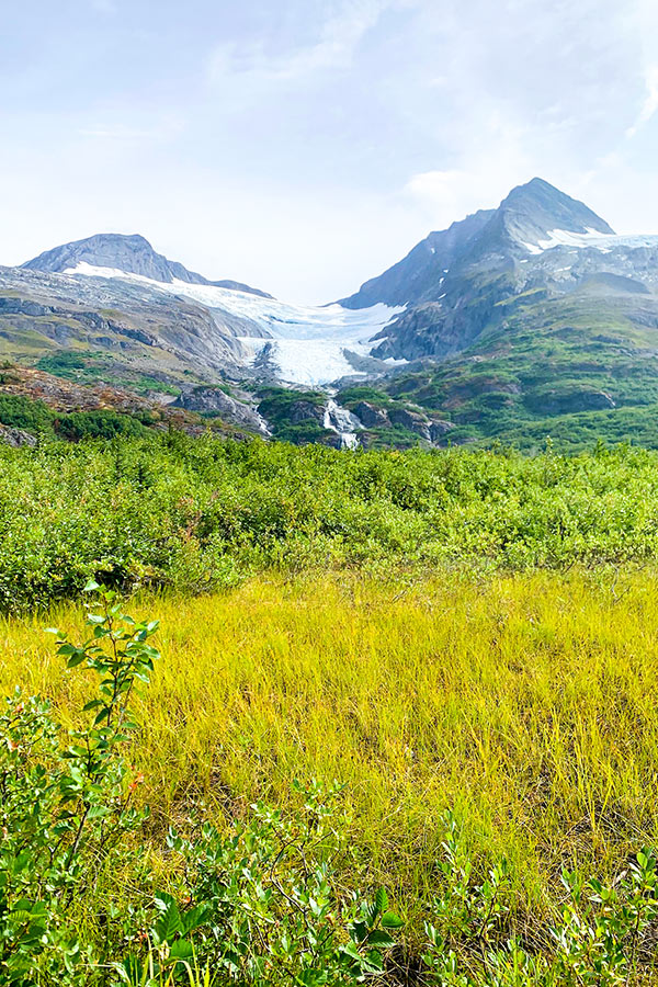 Views of the glaciers surrounding the Portage Valley