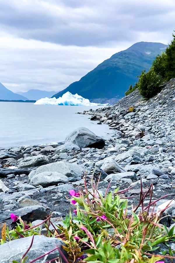 Iceberg and rocky shores of Portage Lake on a hike to see Portage Glacier