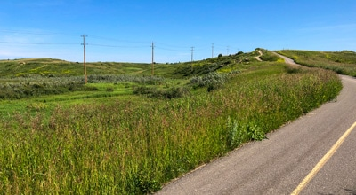 Road Biking Routes in Calgary