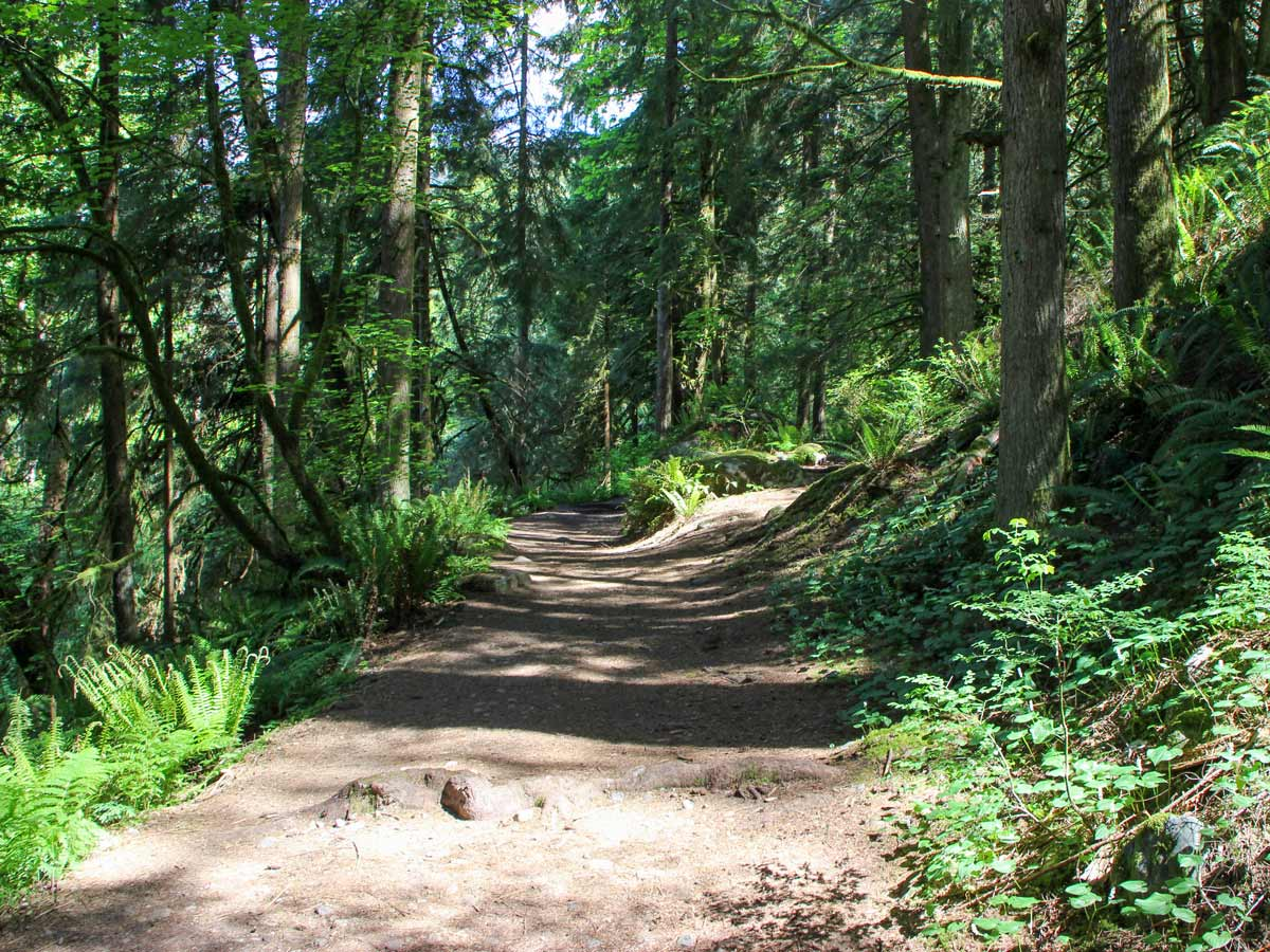 Beutiful dirt path hiking trail to Crystal Falls near Vancouver