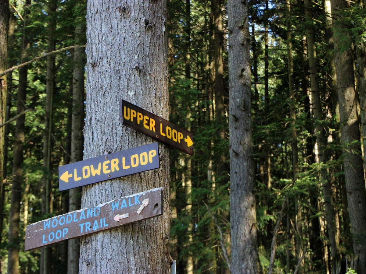 Upper and Lower Loop Trails signposts along trail to Sawblade Falls near Vancouver BC