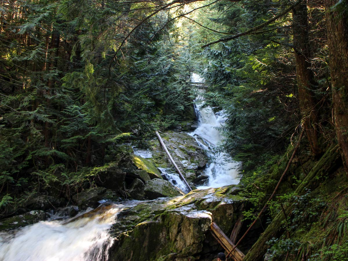Woodland Falls waterfalls along Sawblade Falls hiking trail east of vancouver