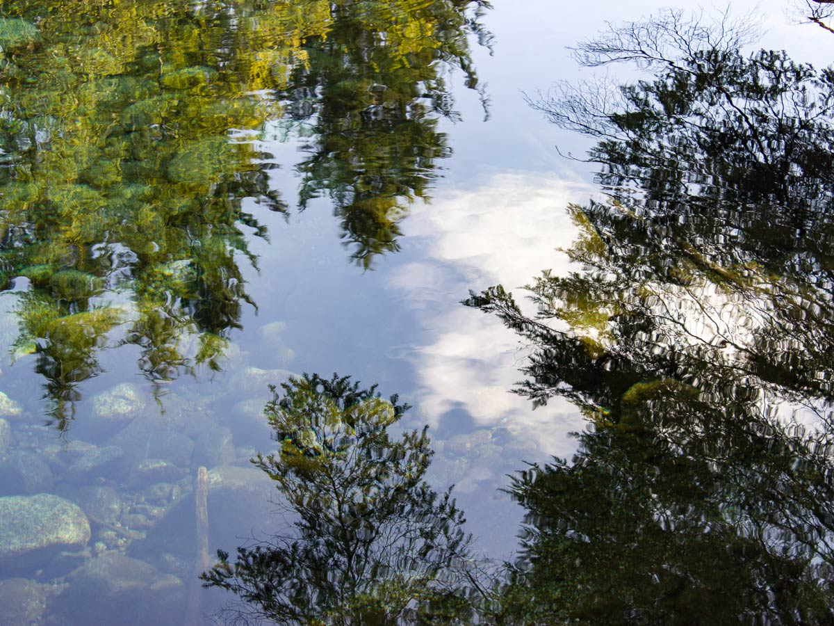 Reflections in the water while canoeing to Widgeon Falls trailhead near Vancouver