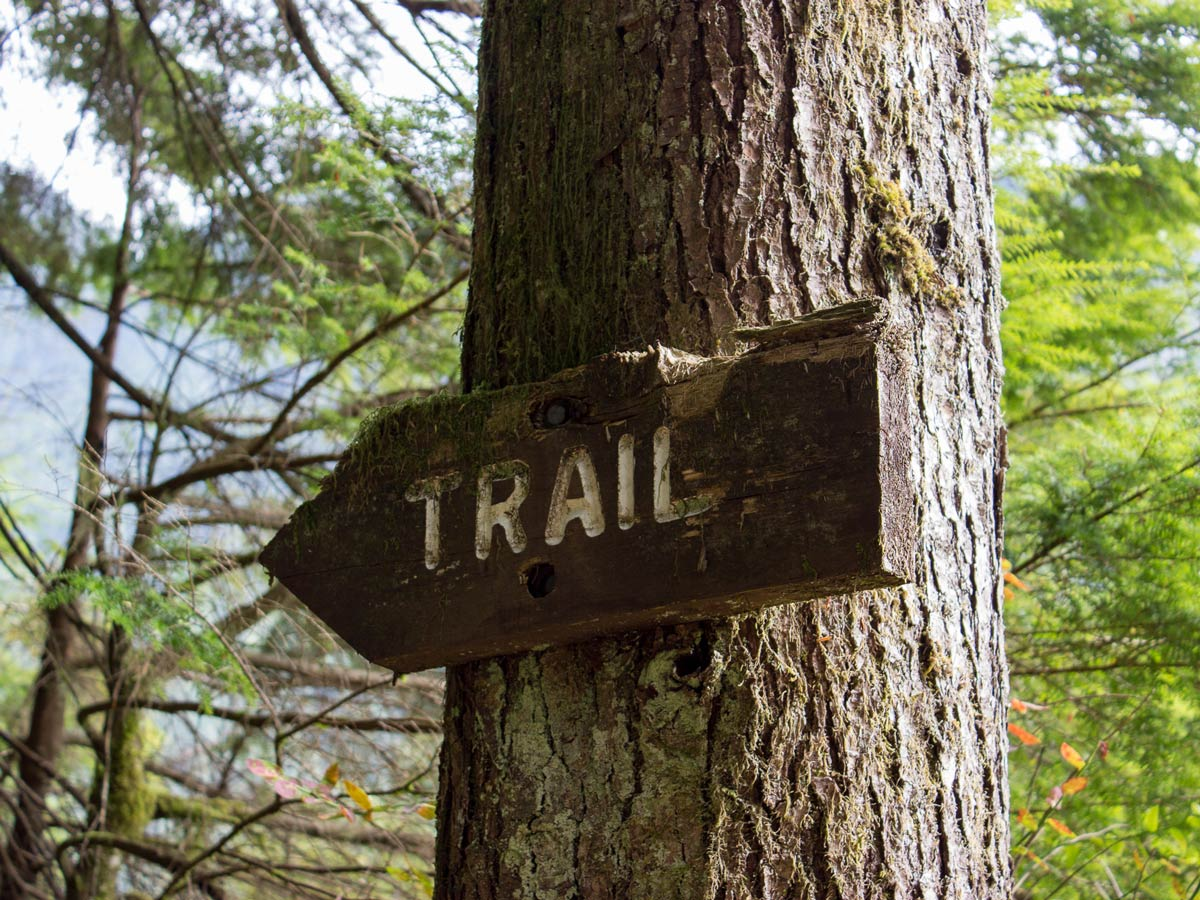 Old trail sign along Widgeon Fall hiking trail near Vancouver BC