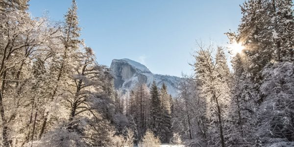 Things To Do Around Yosemite in Winter for Outdoor Lovers
