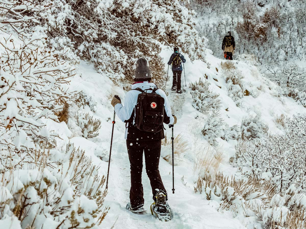 Group of hikers snowshoeing