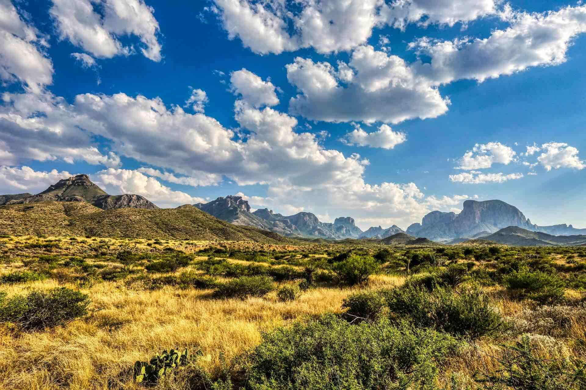 A beautiful landscape of the Big Bend National Park