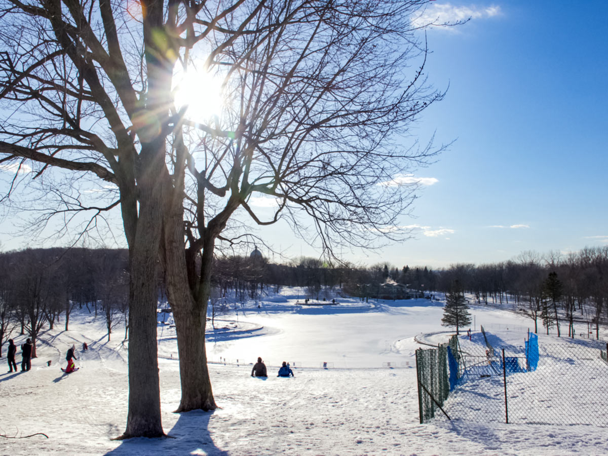 Outdoor ice skating rink sledding in the park in winter Montreal Canada