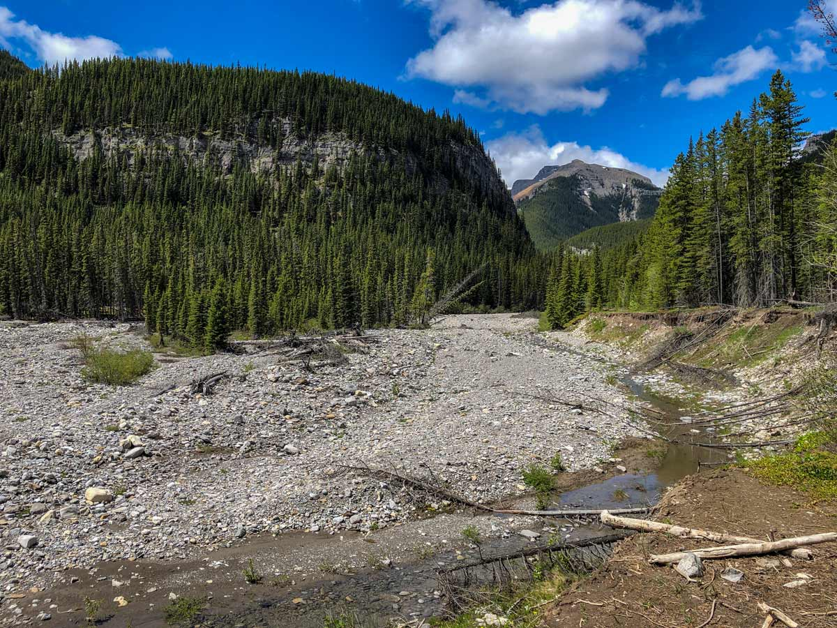 Beautiful Kananaskis forest Little Elbow trail hike Alberta Canada