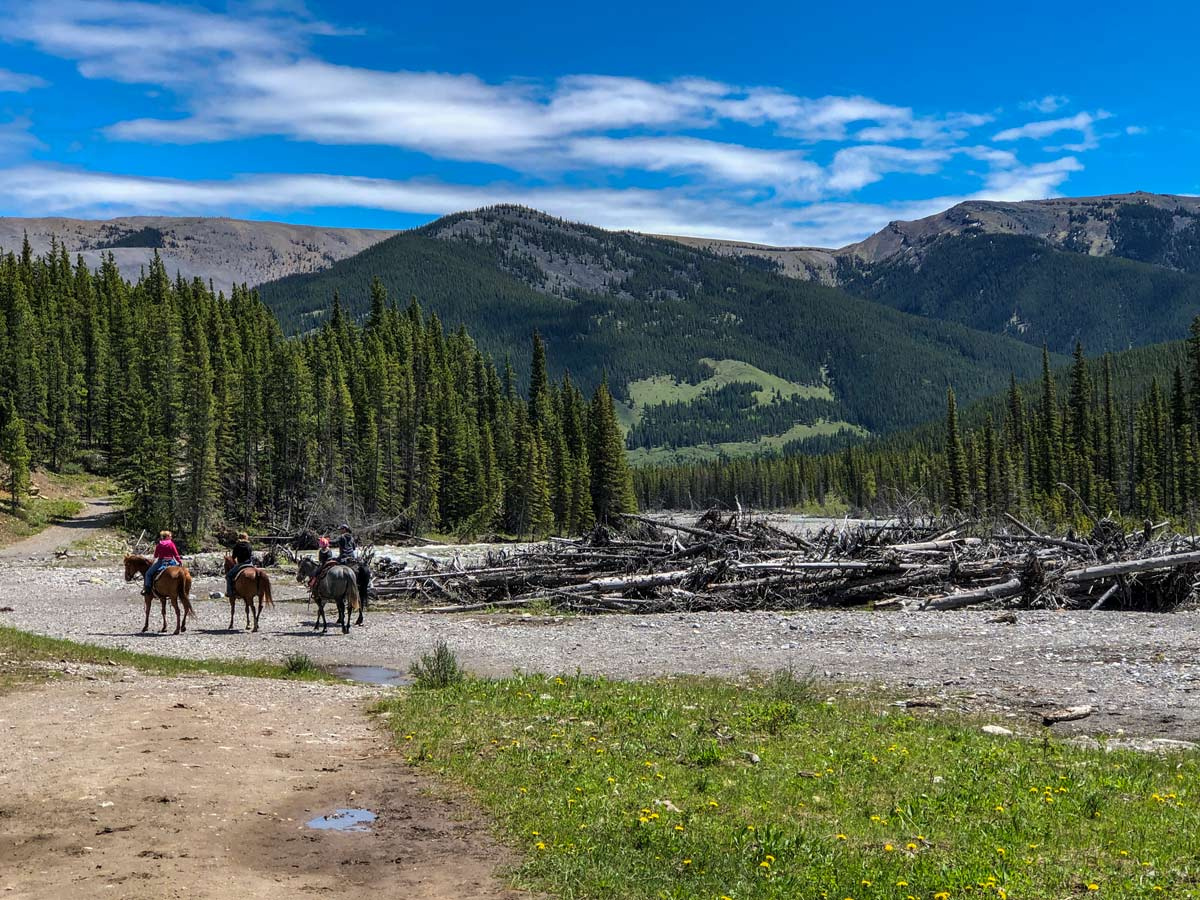 Horseback riders on Little Elbow hiking trail Kananaskis Alberta Canada
