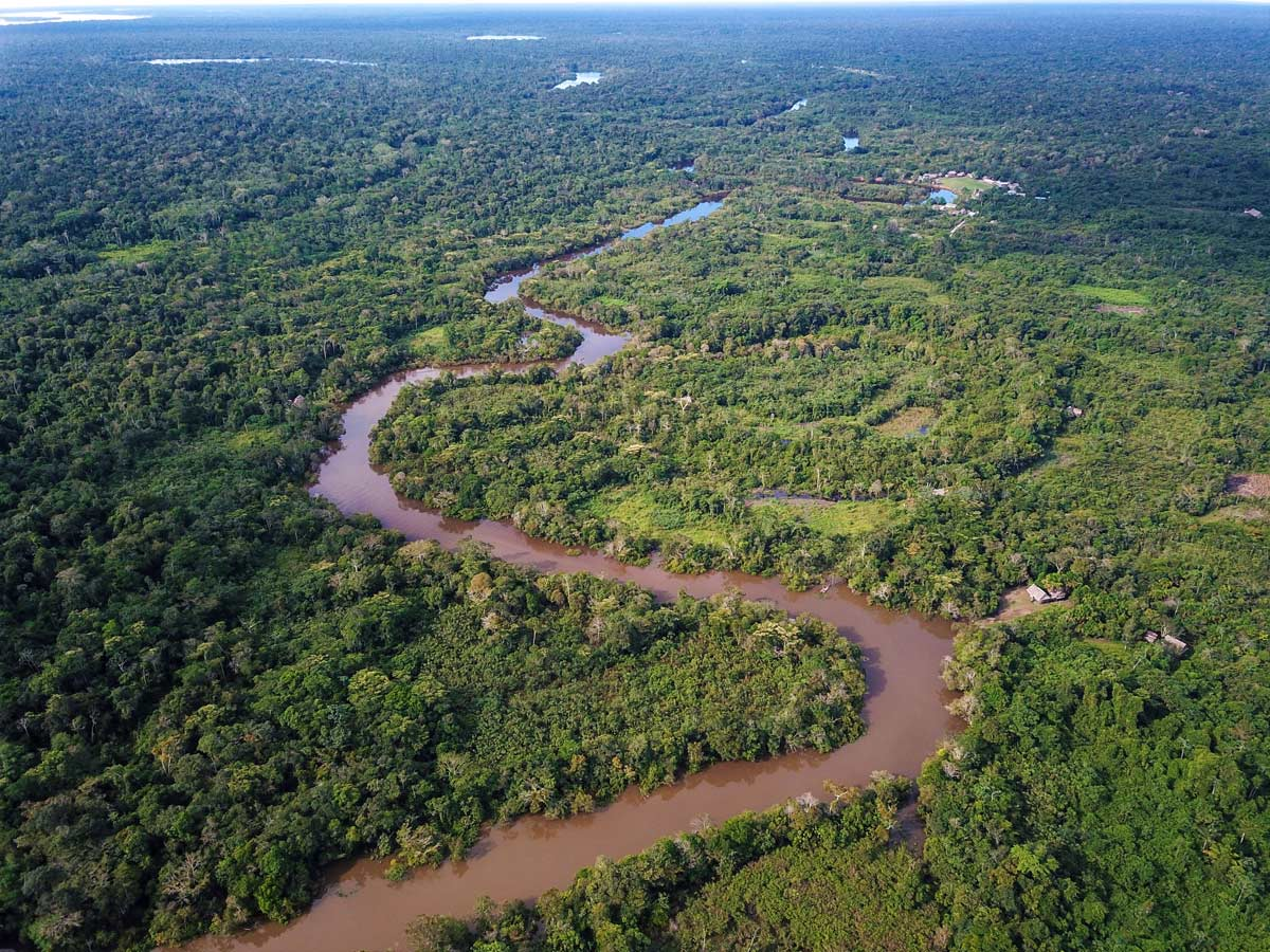 Amazon river aerial meandering birding expedition Amazon Peru