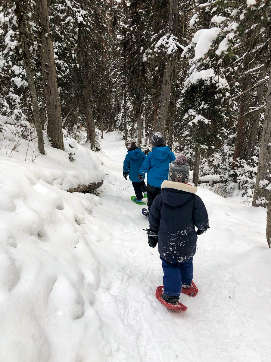 Family forest snowshoeing expedition MSR kids shift tyker snowshoes