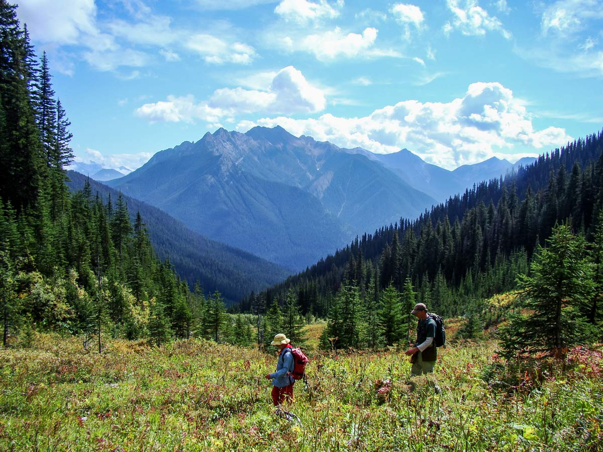 Kootenay National Park hikers crossing mountain field