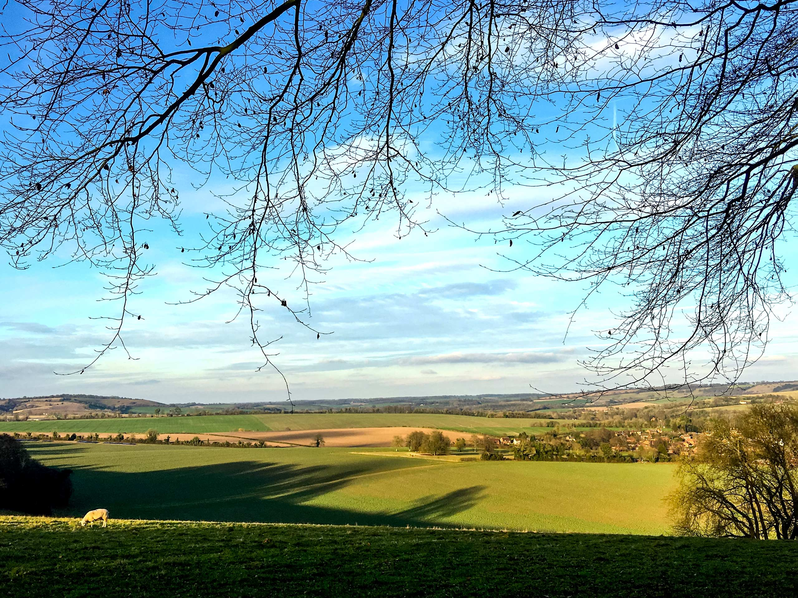 Sunny pastures walking through Meon Valley South Downs England UK