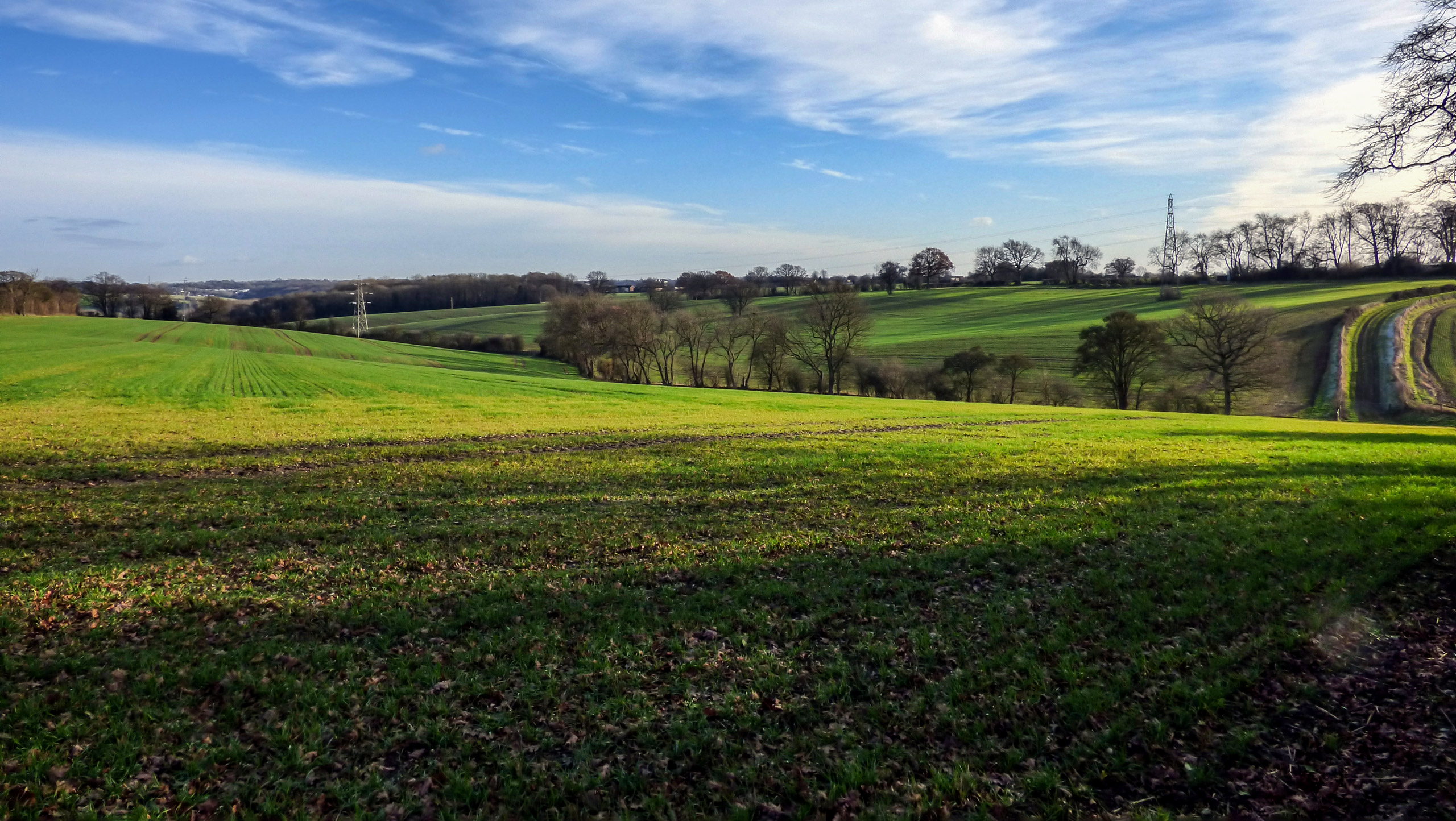 Alford Arms and Chiltern Hills Walk