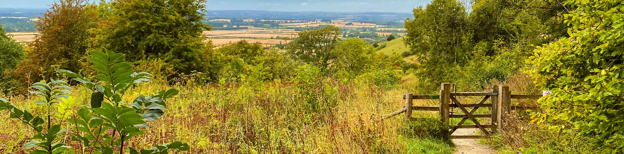 Ibstone and Stokenchurch Loop