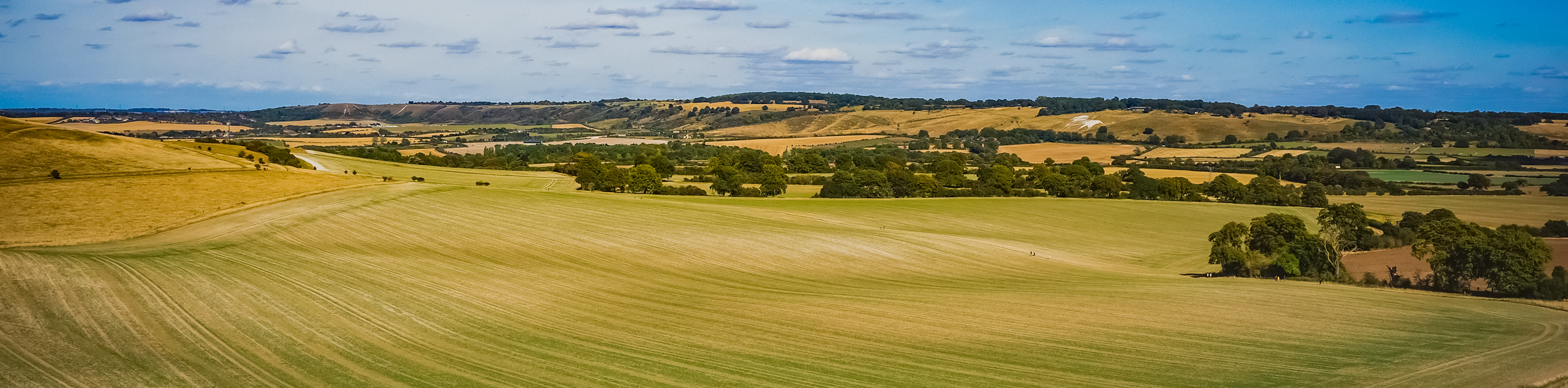The Rose and Crown Ivinghoe Beacon Walk