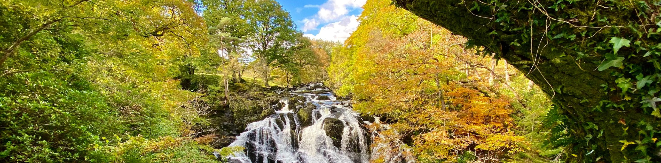 WATERFALL IN SNOWDONIA NATIONAL FOREST