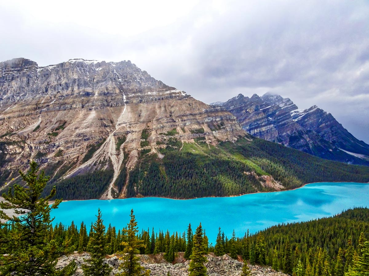Peyto Lake on Icefields Parkway