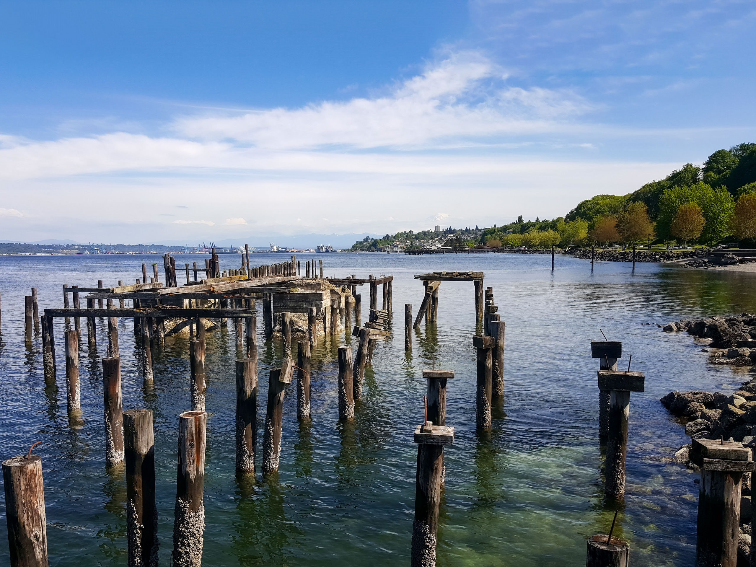 Remains of old pier on the Pacific coast of Tacoma