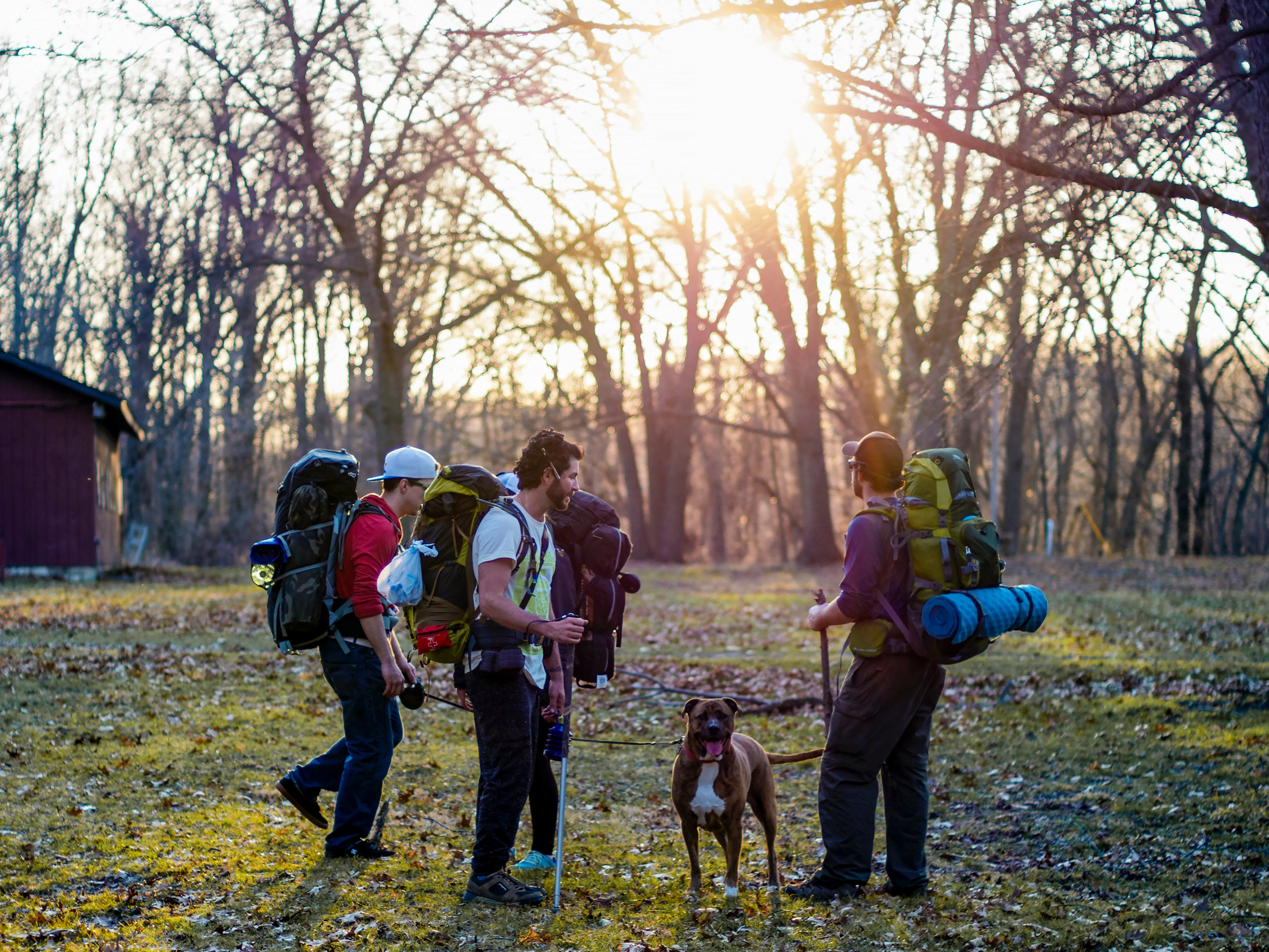 Friends with backpacks camping gear hiking with dogs